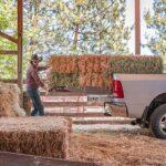 XT4000 Truckslide - Truck Bed Slide - 5